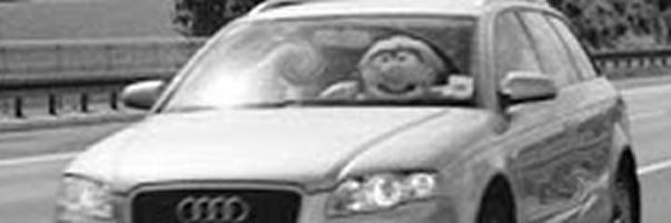 muñeco conductor